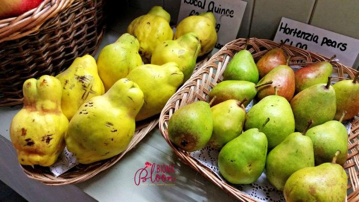 farm fresh pears. find the cross.